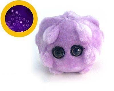 החיידק שטורף גידוליםסרטניים
