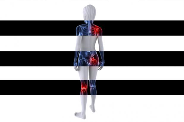 החיסון לדלקת פרקים: תאים מהונדסים שנלחמים במחלה בתוךהגוף