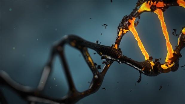 האקרים הצליחו לפרוץ למחשב באמצעות הדבקתו בקוד גנטיביולוגי