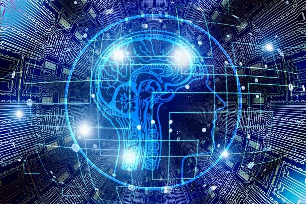 רשת העצבים המלאכותית שפיתחה מבנים ביולוגיים הקיימים במוחאנושי