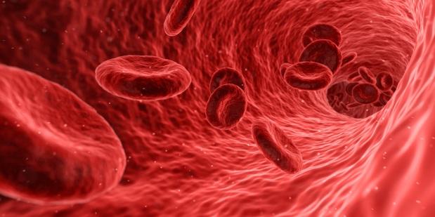 מפעלי הדם הראשונים: בשנה הבאה יקבלו עשרה אנשים עירויי דםסינתטי